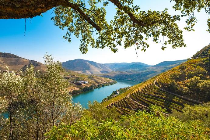 Trasferirsi in Portogallo in pensione. Vicino a Porto… c'è Ermesinde!